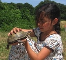 Wellfleet Bay Natural History Day Camp